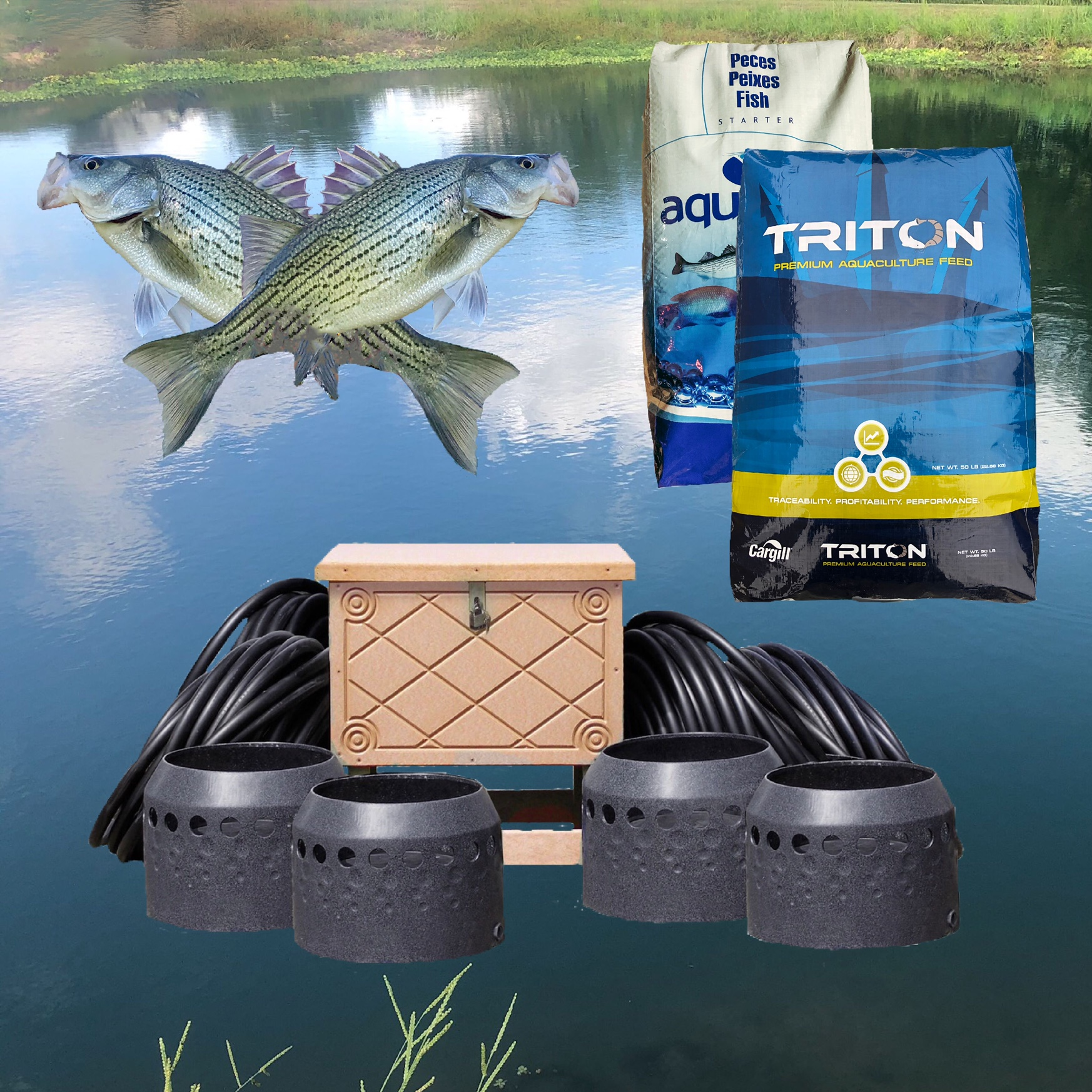 Professional pond and lake package