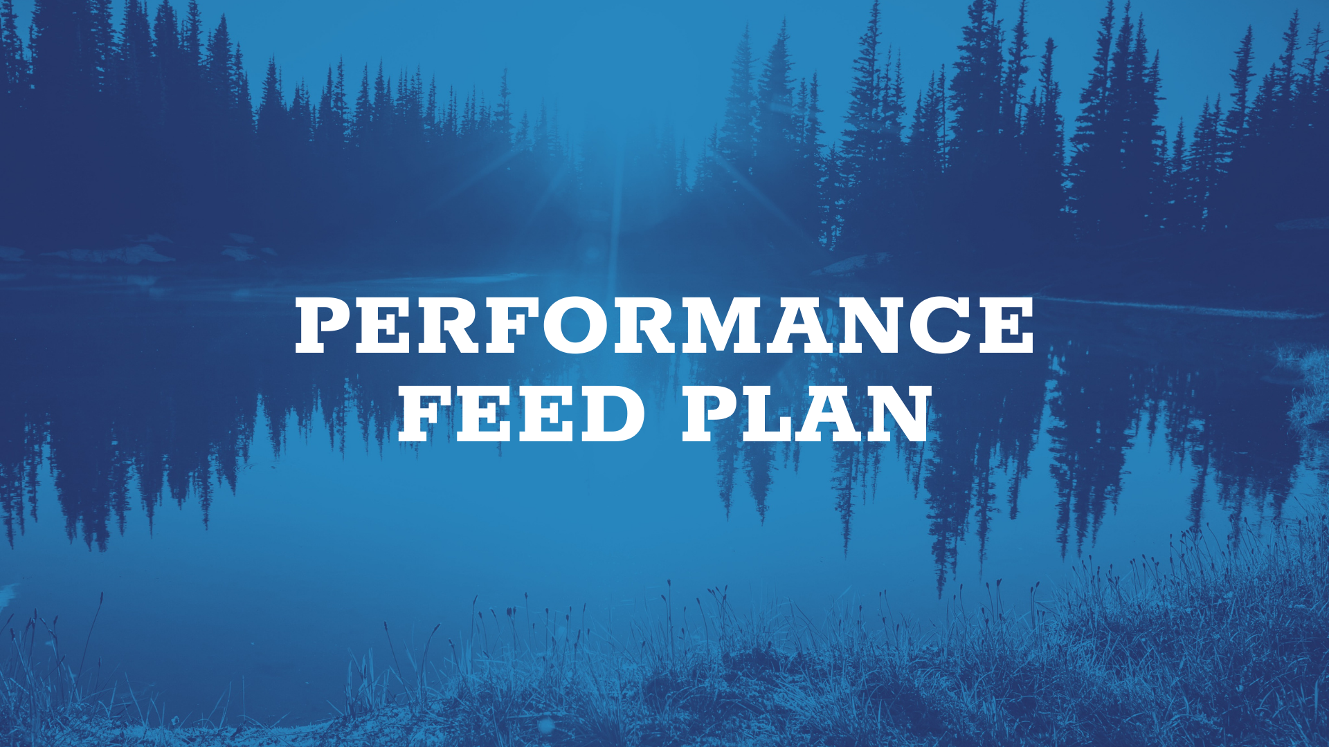 performance feed plan